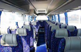 Автобус KING LONG слон