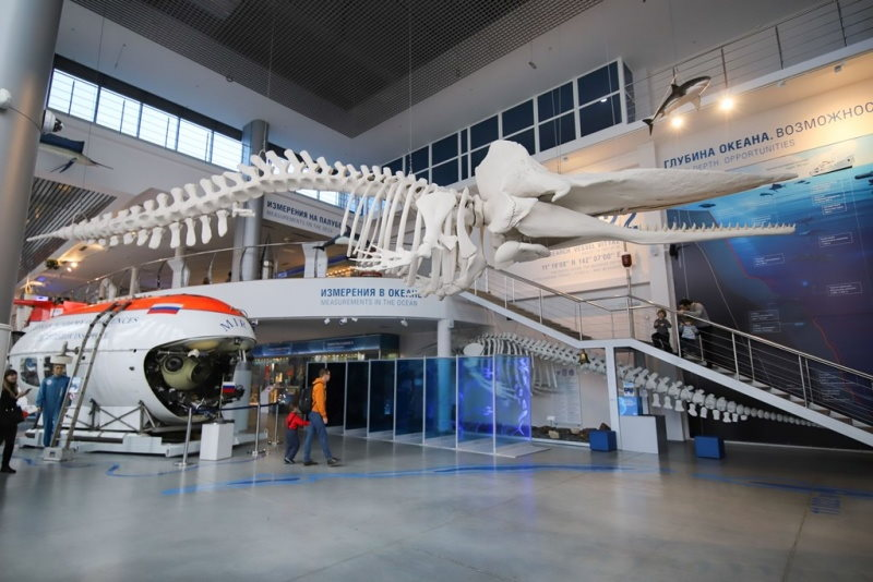 Музей мирового океана - кашалот